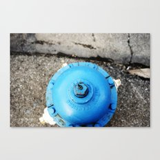 blue is better than red. Canvas Print