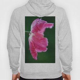 Expressive Pink Tulip Flower on Green Background Hoody