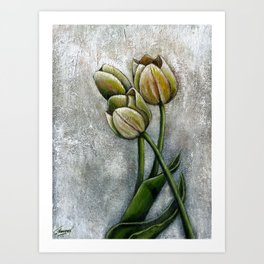 Tulips by J Namerow Art Print