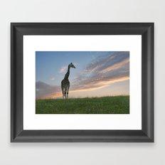Early morning sunrise on the savanna Framed Art Print