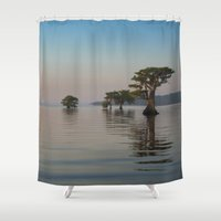 florida Shower Curtains featuring Pure Florida by RachelleVance