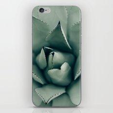 Desert Succulent iPhone & iPod Skin
