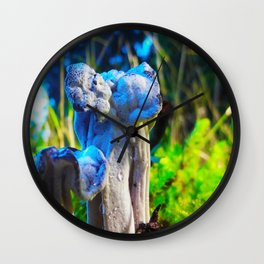 Helvella Color Wall Clock