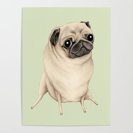 Sweet Fawn Pug Poster