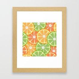 Citruses Framed Art Print