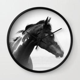 overo horse Wall Clock