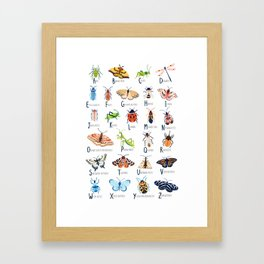 Insect Alphabet Framed Art Print