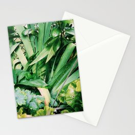Sunny Plants Stationery Cards