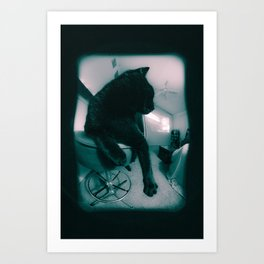 Cat Glance Art Print