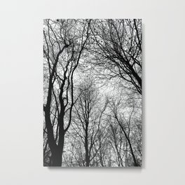 Tree Silhouette Series 6 Metal Print
