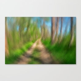 Spinning Sycamore Trail Canvas Print