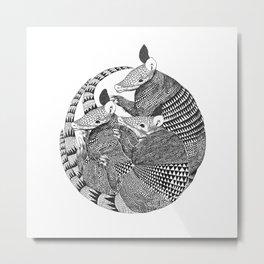 armadillos  Metal Print