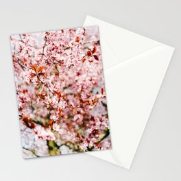 Cherry Blossom Tree (Color) Stationery Cards