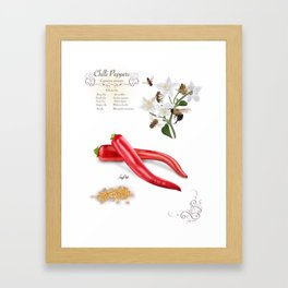 Chilli Peppers and Pollinators Framed Art Print