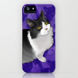 Spider Man the Cat iPhone Case