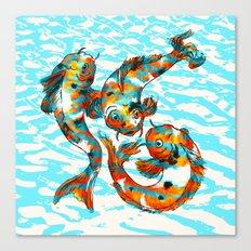 Three Koi Carp Canvas Print