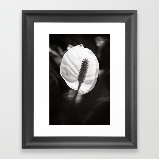 Secret Garden ~ No.2 Framed Art Print