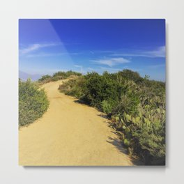A Dusty Path Metal Print