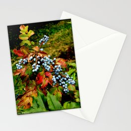 Autumn Berries Stationery Cards