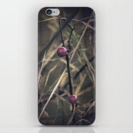 Stanza iPhone Skin