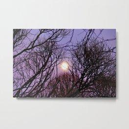 Full moon and purple sky Metal Print