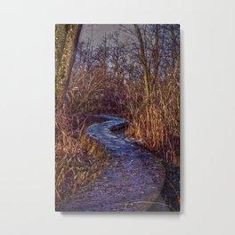 Winter path  Metal Print