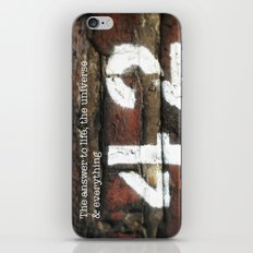 42 - The Meaning of Life. iPhone & iPod Skin