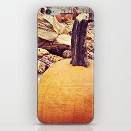 Pumpkins V iPhone Skin