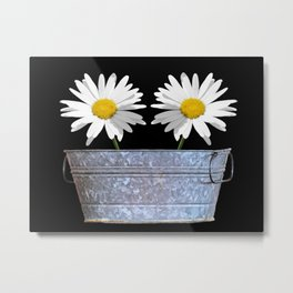 White Daisy White Flowers Washtub Art A344 Metal Print