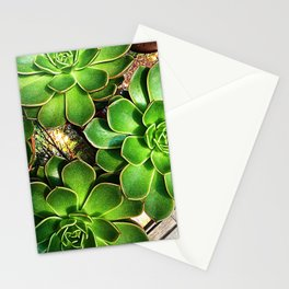 3 Succulents Stationery Cards