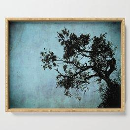Bonsai Tree of the Night Serving Tray