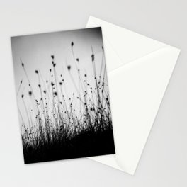 grass field in the sunlight Stationery Cards
