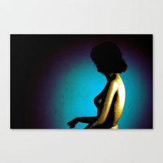 Model2 Canvas Print