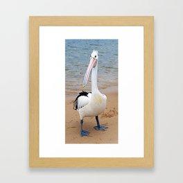 Percy Pelican Framed Art Print