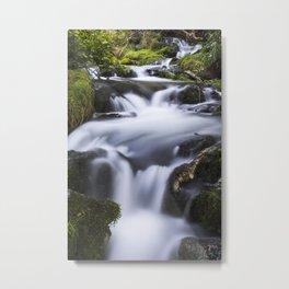 Serenity Springs Metal Print