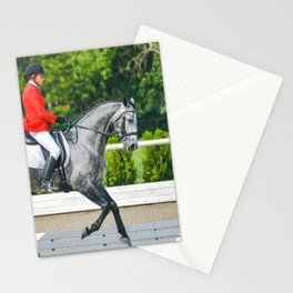 Beautiful girl riding a gray horse Stationery Cards