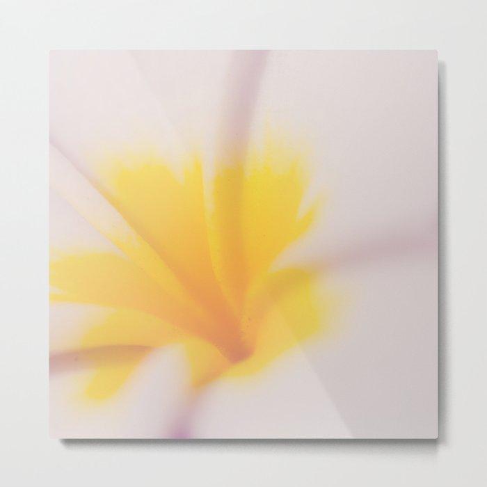 Yellow & Pink Metal Print