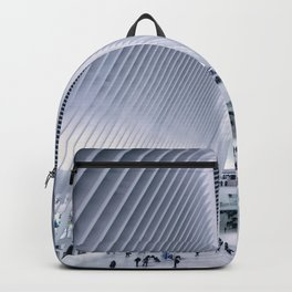 The Oculus Backpack