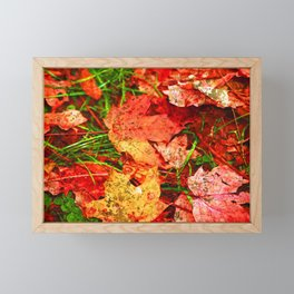 Fallen Leaves with Gold Accents Fine Art Photography Framed Mini Art Print
