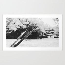 Coals and Water Art Print