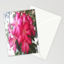 GORGEOUSLY RED Stationery Cards