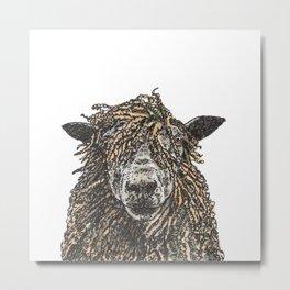 Cotswold Sheep Metal Print