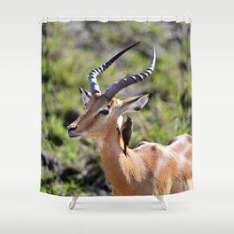 Wildlife Gossip Shower Curtain