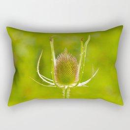 Developing Teasel Flower Rectangular Pillow