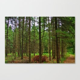 Forest Calling Canvas Print
