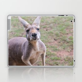 Cheeky Laptop & iPad Skin