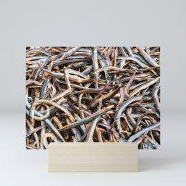 Fish for Food. Mini Art Print
