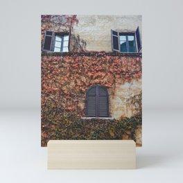 portals .:. room with a view Mini Art Print