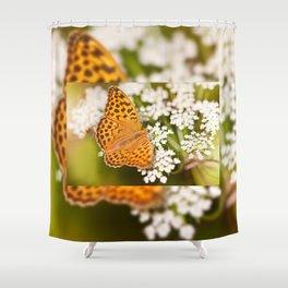 Argynnis paphia butterfly beauty Shower Curtain