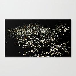 Untitled - An Epilogue Canvas Print